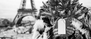 Closeup on woman with Christmas tree against Eiffel tower. The Party Season in Paris. Closeup on modern woman with Christmas tree in fur coat against Eiffel Stock Photography