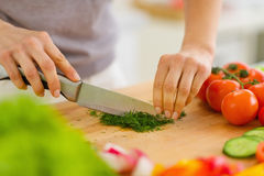 Closeup on woman cutting fresh dill Royalty Free Stock Photo