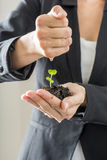 Closeup of woman in elegant suit holding a green sprout growing Royalty Free Stock Photography