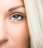 Closeup of  woman eye Royalty Free Stock Image