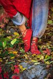 Closeup of woman feet in yoga pose in colorful autumn leaves ou royalty free stock image