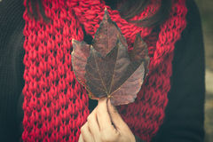 Closeup of woman hand with autumn leaves outdoor stock photos
