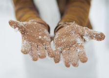 Closeup on woman hand in snowed gloves Stock Photo