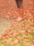 Closeup of woman legs in brown boots. Fall fashion Stock Photos