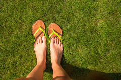Closeup of woman's legs in slippers on green grass Stock Image
