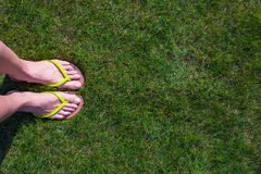 Closeup of woman's legs in slippers on green grass Stock Photo