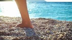 Closeup woman`s legs walking on a beach at sunset over a sea. stock video