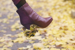 Closeup of woman's shoe with leaves stuck on her heal Royalty Free Stock Photo