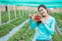 Closeup asian woman show strawberry fruit in wooden basket in strawberry farm. Closeup a woman show strawberry fruit in wooden basket in strawberry farm stock photography