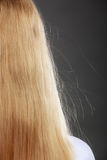 Closeup of woman with static blonde hair. Stock Photo
