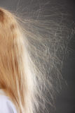 Closeup of woman with static blonde hair. Stock Photography