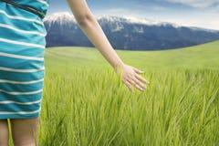 Closeup of woman touching grass Stock Photo
