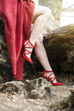 Closeup of womans legs with red high heels. Closeup of womans legs wearing read high heels sitting on tree Royalty Free Stock Images
