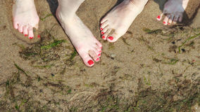 Closeup of women feet. Stock Image