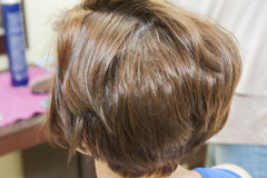Closeup of womens hair style Stock Image