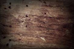 Wooden texture. Closeup of wood texture background Royalty Free Stock Image
