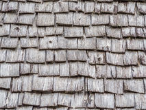 Closeup of wooden grids roof pattern Stock Image