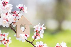 Free Closeup Wooden House With Hole In Form Of Heart Surrounded By White Flowering Branches Of Spring Trees Stock Photo - 144994990
