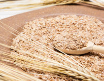 Closeup of wooden spoon filled with wheat bran Royalty Free Stock Photography