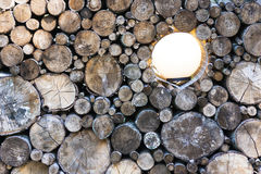 Closeup of woodpile with a lamp Stock Photography