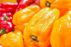 Closeup yellow capsicum pepper from the market Royalty Free Stock Image