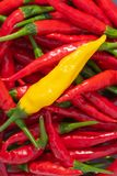 Closeup of yellow chilli pepper on top of red chili peppers. Closeup of fresh chili peppers, yellow on top of red chilli peppers viewed from above, lemon drop stock photography