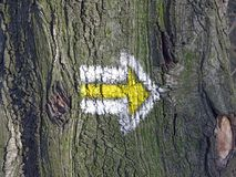 Directional mark on tree. Closeup of a yellow and white arrow directional marking on a European long-distance hiking path, on a tree pointing to the right stock image