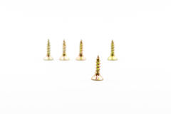 Closeup yellow zinc coated screw isolate on white background Royalty Free Stock Images