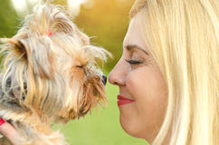 Closeup of Yorkie and owner touching noses Royalty Free Stock Photos
