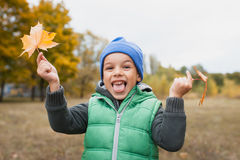 Closeup of young boy playing with Autumnal leaves Stock Image