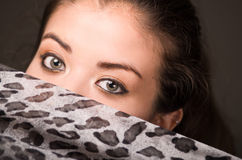 Closeup young brunette model posing with grey brown scarf covering half her face revealing beautiful eyes only, dark Royalty Free Stock Image