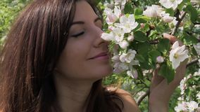 Closeup young caucasian woman sniffs flowers of blooming apple trees in garden. Closeup portrait young beauty Caucasian woman touching and sniffing the smell of stock footage