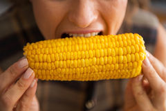 Closeup on young housewife eating boiled corn Stock Image