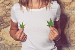 Closeup of young woman holding cannabis leaves in her hands Royalty Free Stock Image