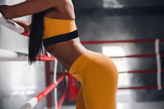 Closeup of a young womans body against the backdrop of a boxing ring. Sexy beautiful athletic ass. Beautiful athletic woman Royalty Free Stock Photo