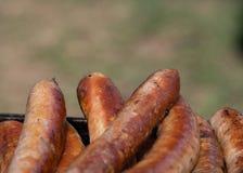 Closeupbild av lagade mat korvar royaltyfri bild
