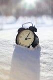 Closeupbild av ringklockan i snö Vårbegreppsbild Royaltyfria Bilder