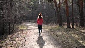 Closeupen av ben som k?r till och med en h?st, parkerar p? solnedg?ngen Rinnande argt land för folk i jogga motivation för skog i stock video
