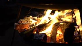 Closeupen av bränningen loggar in lägereld för den öppna flamman på natten i ultrarapid stock video