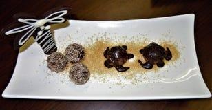 Closeupen av en skärm av chokladsköldpaddor, palmträdet och doppade macadamiamuttrar på ett socker sätter på land royaltyfri fotografi