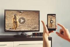 Closeupen av en smart telefon förbinds till en smart TV fotografering för bildbyråer
