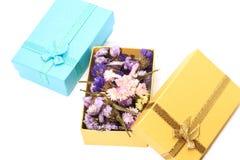Closeupen av färgrikt torkar blomman med den guld- gåvaasken och blåttgåvan Royaltyfri Foto