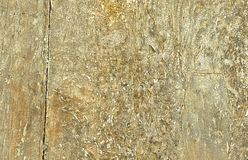 Closeupen av gammala wood plankor texture bakgrund Arkivbilder