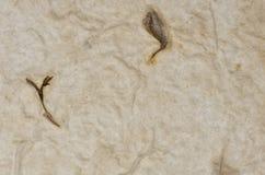 Closeupen av handgjort pappers- texturerar bakgrund med leafen Royaltyfri Bild