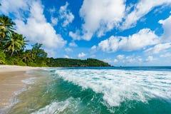 Closeupen av Indiska oceanen vinkar i den Seychellerna stranden, den Mahe ön royaltyfri bild