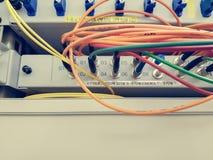 Closeupen av optisk kabel för fiber pluggade in i strömbrytaren Fotografering för Bildbyråer