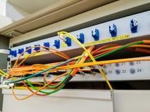 Closeupen av optisk kabel för fiber pluggade in i strömbrytaren Arkivbilder