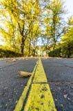 Closeupen av trottoar i parkerar i Sunny Autumn Day With Golden Leaves i träd, Lettland, Europa, begrepp av den avslappnande lopp royaltyfria foton