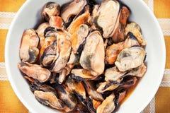 closeupen dof marinated grunda musslor Royaltyfri Fotografi