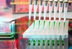 Laddad multipipette över en plätera för DNA-analys arkivbilder